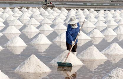salt05.jpg