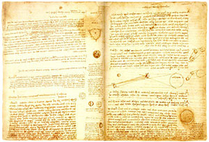 codex.jpg