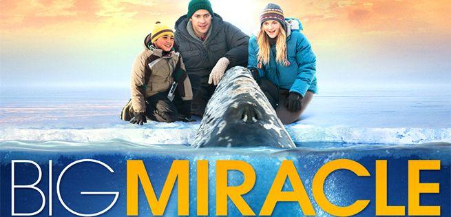 big-miracle-655x315.jpg