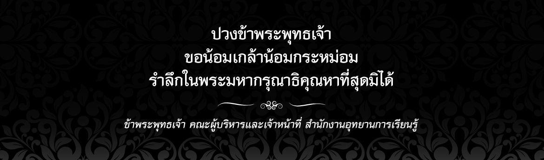 king_1170x345px.jpg