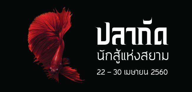 fish_655x315px.jpg