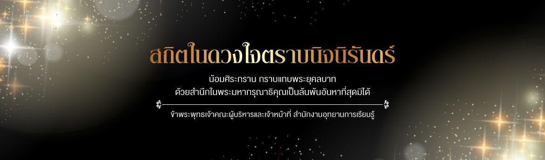 banner_king1170.jpg