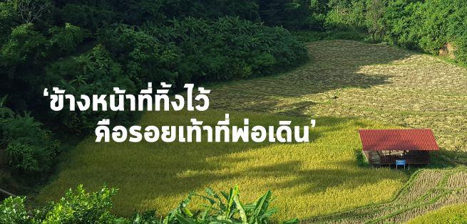 BannerStory-11.jpg